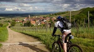 Alsace Biking Image